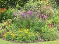 Gardens of The Jane Austen House